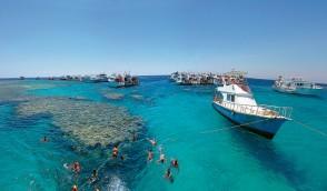 جزيرة مجاويش